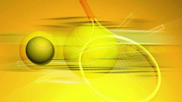 tenis de camp paleta racheta minge